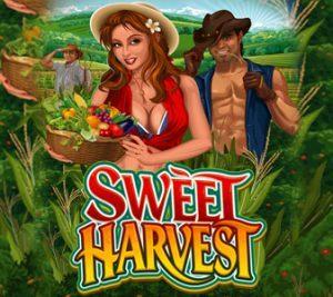 sweet-harvest-logo